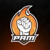 PAM.csgo