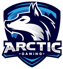 Arctic.csgo